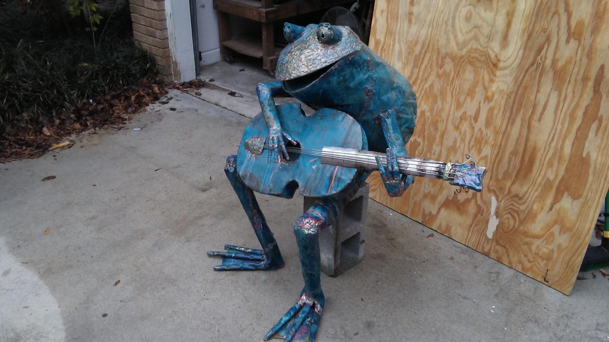 Kim's New Frog